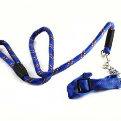 Leash with adjustable collar and chain